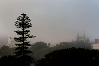 Sydney fog St Marys Cathedral