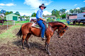 Campdrafting at Dungog